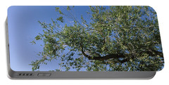 Low Angle View Of A Tree Branch Portable Battery Charger