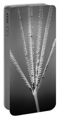 Portable Battery Charger featuring the photograph Loxahatchee Grass by Bradley R Youngberg