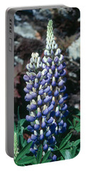 Lupine 2 Portable Battery Charger