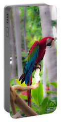 Portable Battery Charger featuring the photograph Macaw by Angela DeFrias