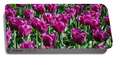 Portable Battery Charger featuring the photograph Magenta Tulips by Allen Beatty