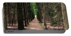 Portable Battery Charger featuring the photograph Magical Path by Bruce Patrick Smith