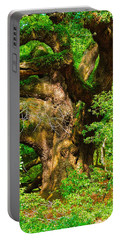 Magnificent Angel Oak Portable Battery Charger