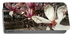 Portable Battery Charger featuring the photograph Magnolia Branches by Caryl J Bohn