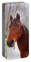 Majestic Morgan Horse Portable Battery Charger by Elizabeth Dow