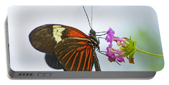 Portable Battery Charger featuring the photograph Malay Lacewing by Nick  Boren