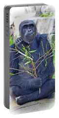 Portable Battery Charger featuring the photograph Male Ape by Jim Fitzpatrick