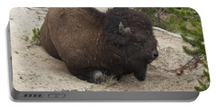 Male Buffalo At Hot Springs Portable Battery Charger by Belinda Greb