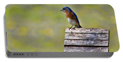 Portable Battery Charger featuring the photograph Male Eastern Bluebird by Lana Trussell