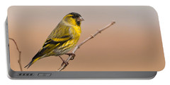 Male Eurasian Siskin Portable Battery Charger