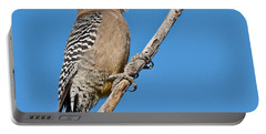 Male Gila Woodpecker Portable Battery Charger