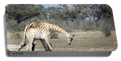 Portable Battery Charger featuring the photograph Male Giraffes Necking by Liz Leyden
