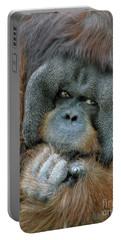 Portable Battery Charger featuring the photograph Male Orangutan  by Savannah Gibbs