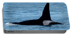 Portable Battery Charger featuring the photograph Male Orca Killer Whale In Monterey Bay 2013 by California Views Mr Pat Hathaway Archives