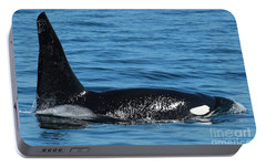 Portable Battery Charger featuring the photograph Lonesome George Ca165  Male Orca Killer Whale In Monterey Bay California 2013 by California Views Mr Pat Hathaway Archives