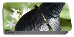 Male Scarlet Swallowtail Portable Battery Charger