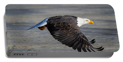 Male Wild Bald Eagle Ready To Land Portable Battery Charger by Eti Reid