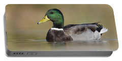 Portable Battery Charger featuring the photograph Mallard by Bryan Keil