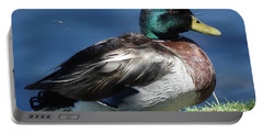 Portable Battery Charger featuring the photograph Mallard Duck by Kerri Mortenson