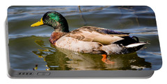 Mallard In Pond Portable Battery Charger