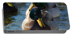 Portable Battery Charger featuring the photograph Mallard In The Morning Sun by Patrick Shupert