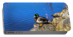 Mallard Looking Over His Domain Portable Battery Charger
