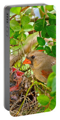 Mama Bird Portable Battery Charger by Frozen in Time Fine Art Photography