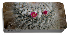 Mammillaria Geminispina Portable Battery Charger