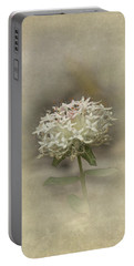 Portable Battery Charger featuring the photograph Mandy by Elaine Teague