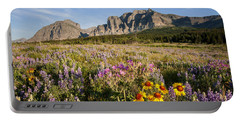 Portable Battery Charger featuring the photograph Many Glacier Spring by Jack Bell