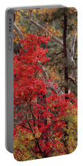 Maple Sycamore Pine Portable Battery Charger