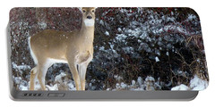 March Snow And A Doe Portable Battery Charger