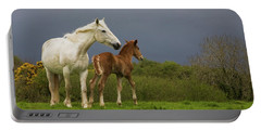 Mare And Foal, Co Derry, Ireland Portable Battery Charger