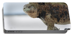 Marine Iguana Male Turtle Bay Santa Portable Battery Charger
