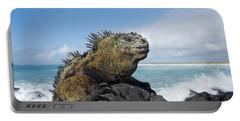 Marine Iguana Turtle Bay Santa Cruz Portable Battery Charger