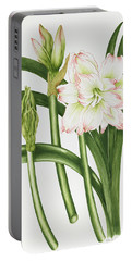 Mary Lou Amaryllis Portable Battery Charger