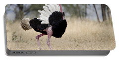 Masai Ostrich Struthio Camelus Portable Battery Charger