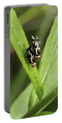 Mating Fruit Flies Portable Battery Charger
