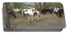 May Hill Ponies 2 Portable Battery Charger by John Williams