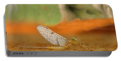 Mayfly Art Portable Battery Charger