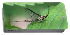 Mayfly Portable Battery Charger