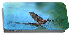 Mayfly Reflected Portable Battery Charger