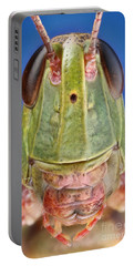 Meadow Grasshopper Portable Battery Charger