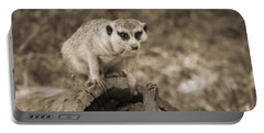 Meerkat On A Log Portable Battery Charger by Douglas Barnard