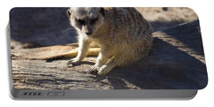 Meerkat Resting On A Rock Portable Battery Charger by Chris Flees