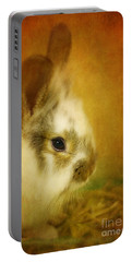 Memories Of Watership Down Portable Battery Charger by Lois Bryan