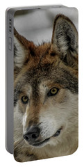 Mexican Grey Wolf Upclose Portable Battery Charger