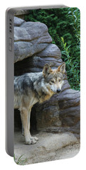 Mexican Wolf #2 Portable Battery Charger