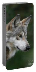 Mexican Wolf #5 Portable Battery Charger