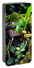 Portable Battery Charger featuring the photograph Miniature Garden by Jim Thompson